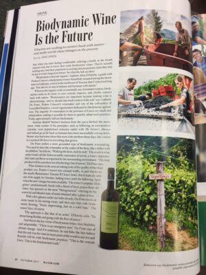 Concori biodynamic wine article