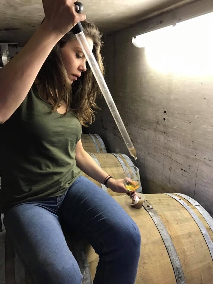 Divella wijndomein 2