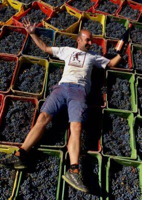 Gabriele Concori oogst